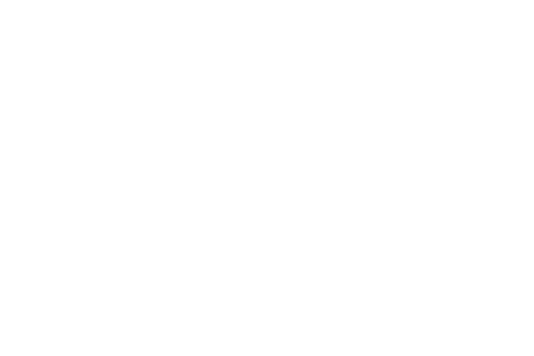 About VeriPark - global FSI player